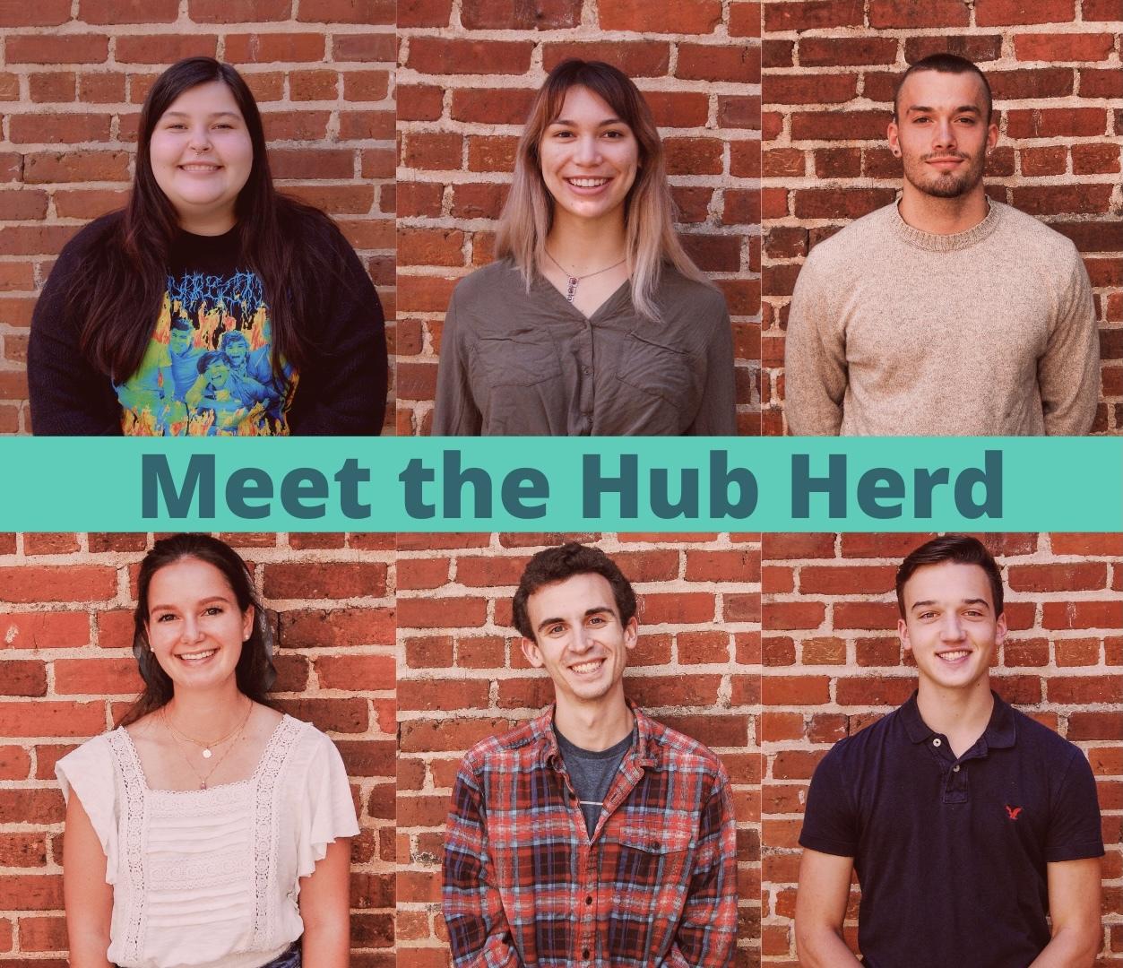 Headshots of the the Fall 2020 Hub Herd